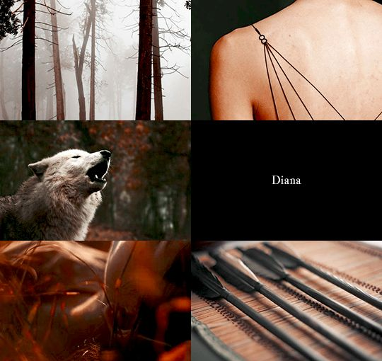 Greek Gods and their Roman counterparts   Artemis & Diana 2/2