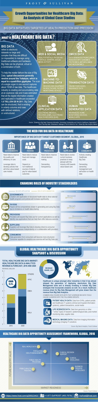 Case analysis grolsch growing global