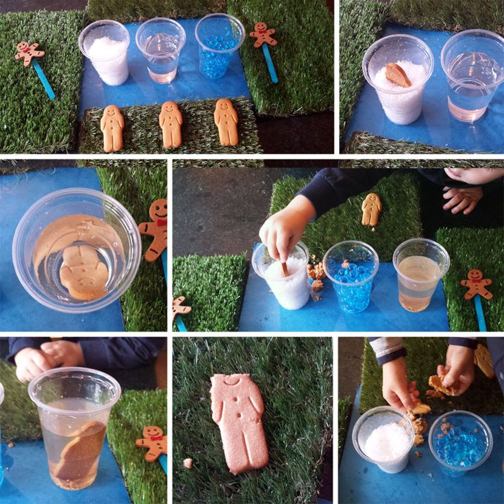 Toddler and pre school science experiment - The Gingerbread Man