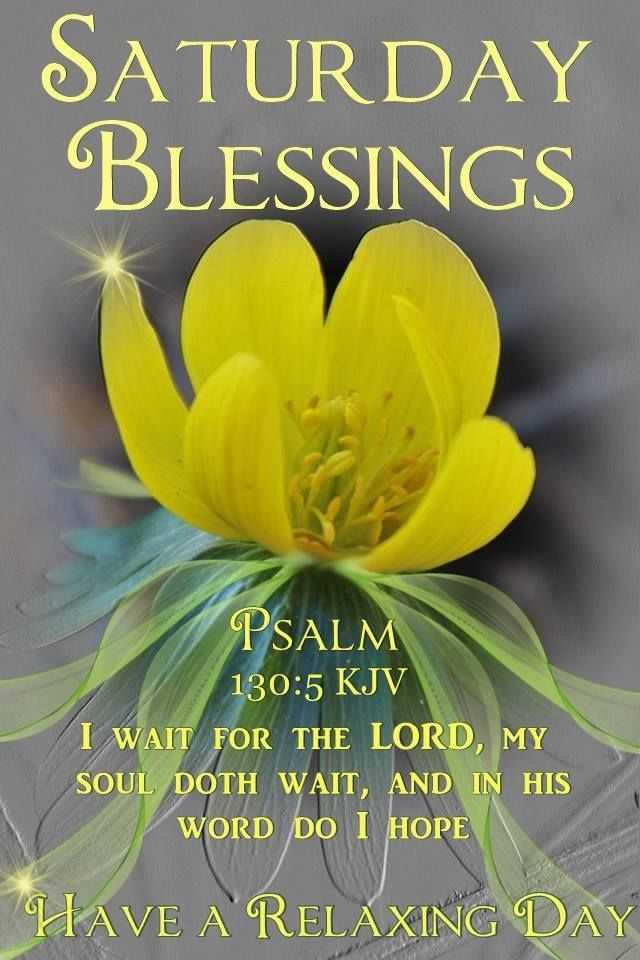 180 Saturday Blessings Images Pics Quotes Wishes And Gif Saturday Quotes Good Morning Quotes Good Morning Saturday