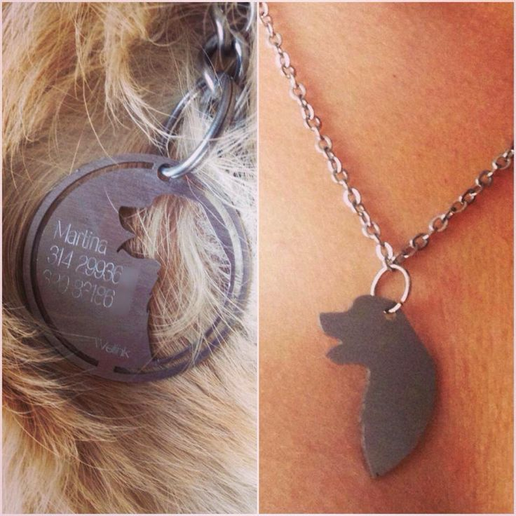 Welinktags sharing the love for our four-legged child a friendship tag for dogs and cats