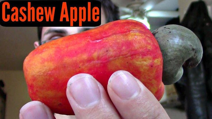 Cashew Apple Review - Weird Fruit Explorer Ep. 186 - YouTube