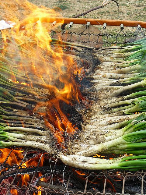 Calçotada .La calçotada es una comida tradicional de la región de Catalunya. Los calçots se asan directamente sobre brasas y se comen con la mano, aderezados con salsa romesco.
