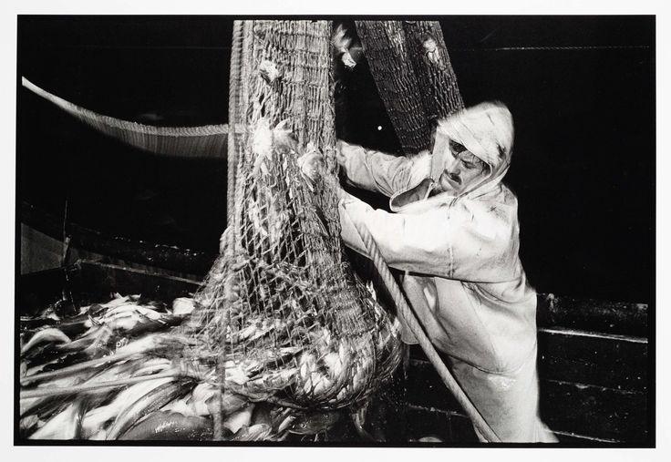HD57 Elvira. Op de rondviskotter wordt de vis binnengehesen., Joost Guntenaar, 1981