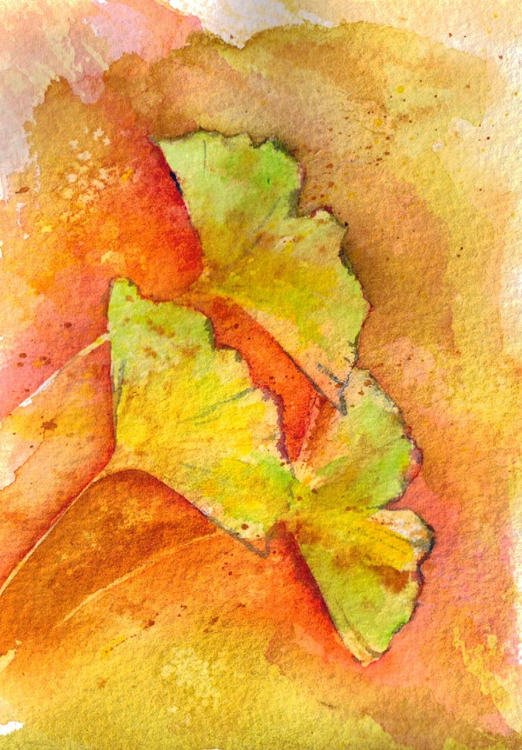 Ginkgo Trio Watercolor Painting. $25.00, via Etsy. (sold - painting by Jean Hood)