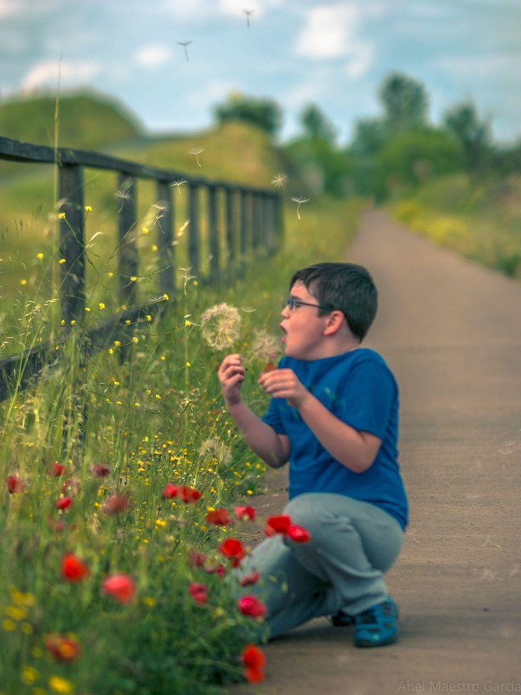 Pide el Deseo - Los sueños en la infancia