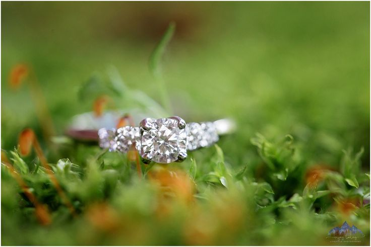 Engagement Ring | Moss | Enjoy Today Photography