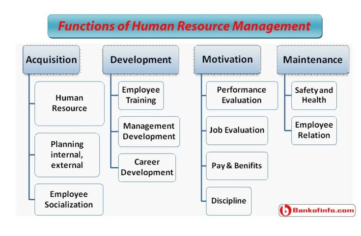 basic functions of human resource management pdf