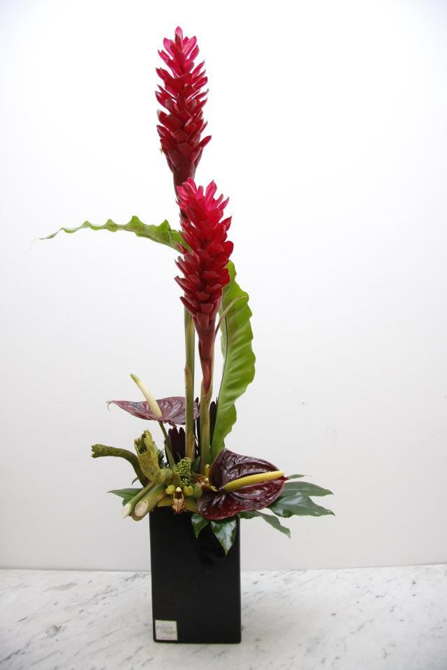 Tropical flower arrangement of Big red ginger flower and deep red anthurium in a slick modern black vase