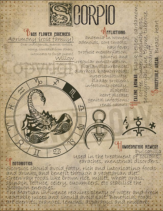 Scorpio Astrological Sign Correspondences Book of Shadows
