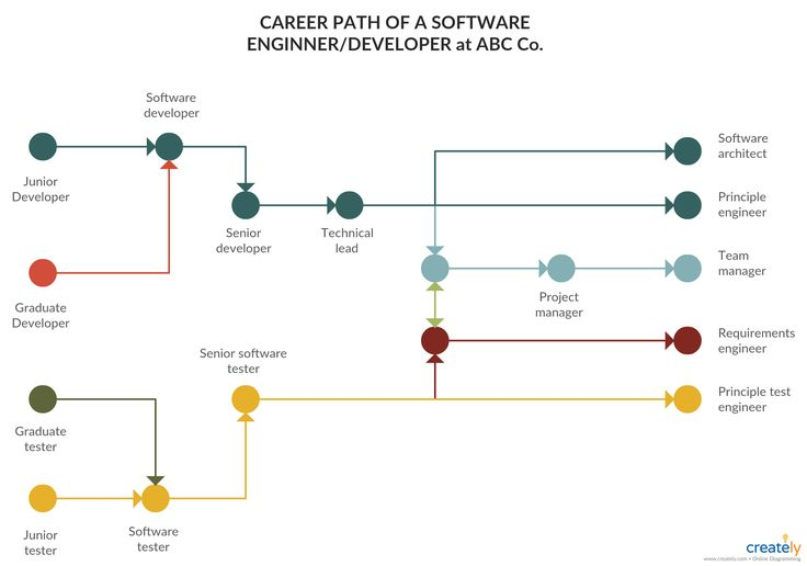 Software Engineer Career Path