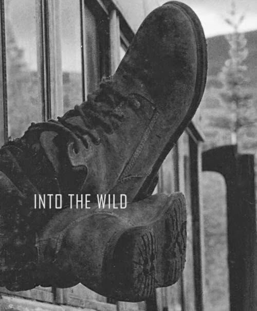 into the wild and as you Did he lack the requisite humility to go into the wild (72) what do you think the experience must have been like for for into the wild by jon krakauer _____ first-year reading experience university of south carolina.