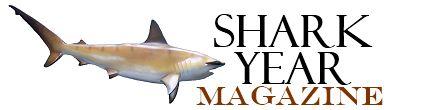 MoE and Maersk Oil Celebrate Successful Conclusion of Qatar Whale Shark season   Shark Year Magazine