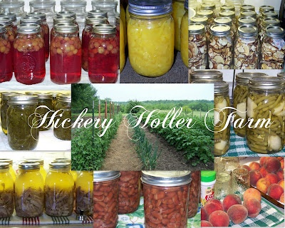 Food preservation from applesauce to zucchini.: Canning Ideas, Canning Recipes, Canning Food, Food Recipes Decor, Recipes Canning, Canning Tips, Canning Preserves, Food Preserves, Canning Freeze