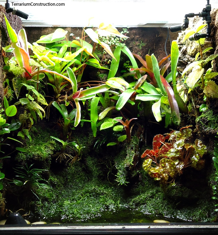 how to make paludarium waterfall