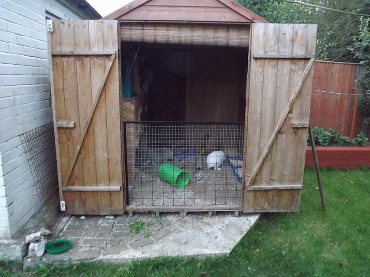 Garden shed rabbit house by Caitlyn Cannon. 7x7ft plus run #AHutchIsNotEnough