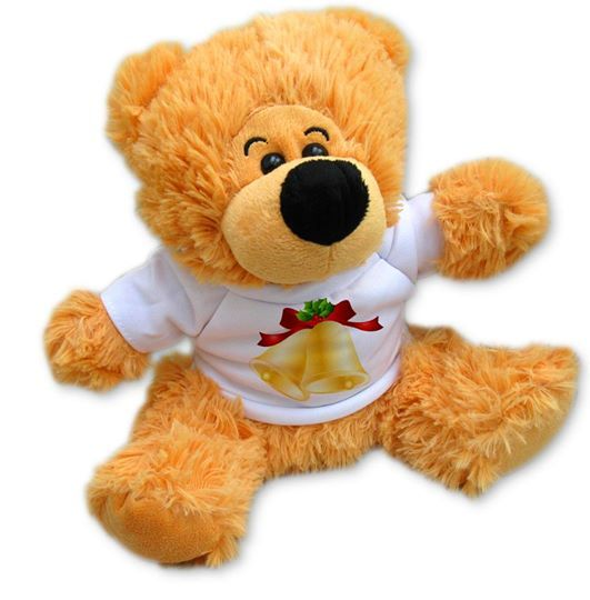 Add a photo, picture or text to the teddy t-shirt