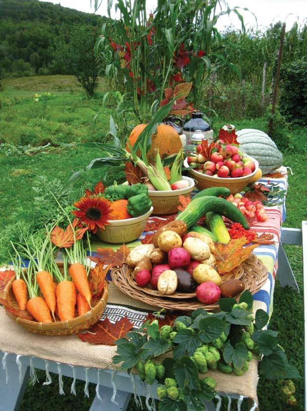 Organic Farming on One Acre or Less Organic farming is possible even with a small piece of land.