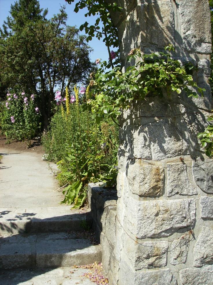 VanDusen Botanical Garden, Vancouver BC, July 2012