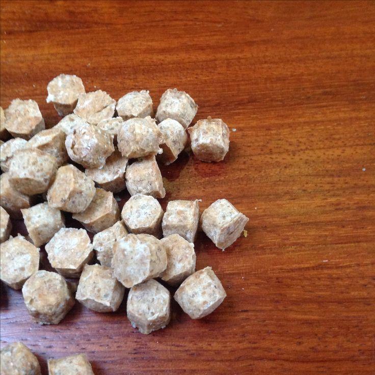 Kattensnoepjes van honing, kattenmelk, roggemeel en speltmeel