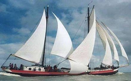 Bruine vloot - Wikipedia