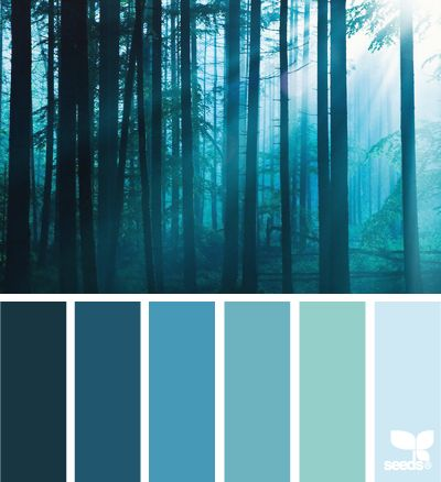 forest blues  .... white morning sun entering the foggy forest in the early hours of the morning ... luv the range of blues in this color pallette of six colors .,,.
