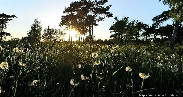 Природа Лиепаи Лиепая, Латвия