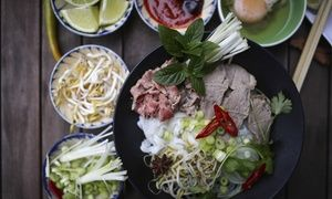 Groupon - Vietnamese Food at Pholicious (Up to 50% Off). Three Options Available. in Patrick Henry Mall. Groupon deal price: $10