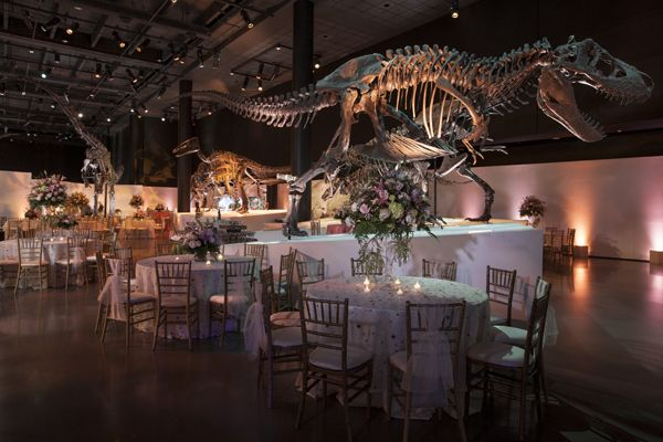 Hall of Paleontology. Houston Museum of Natural Science - Houston. They do weddings. O.O