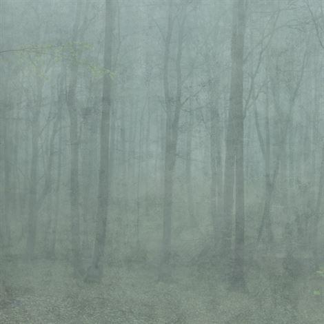 Skog digital wallpaper - green - Sandberg Tyg & Tapet