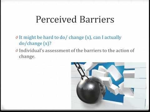 Health Belief Model Presentation - http://health.bruisedonion.com/1167/health-belief-model-presentation/