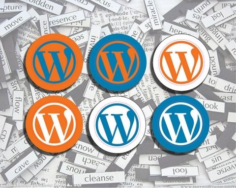 Wordpress Mistakes You Don't Want To MakeBuilding a website in Wordpress is something that most people can do, as long as they have a reasonable level of technical competence. You need patience and time to learn how it works. But it's not overly complicated, even for beginners. As with most things in life there are several Wordpress mistakes you don't want to make. How do we know? We know because most people who've built a Wordpress website have made at least ...