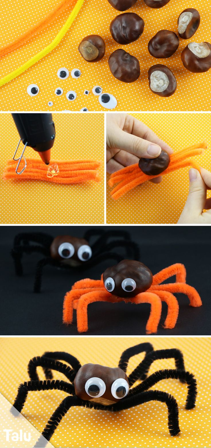 Spinne basteln – Ideen und Bastelvorlage