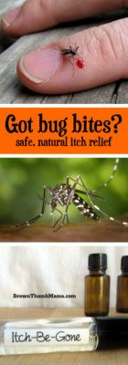 Sometimes the bugs bite, in spite of your best efforts. This easy, natural remedy relieves the itch, speeds healing, and is safe for kids.