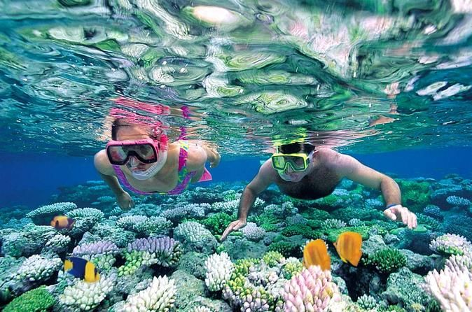 Book your adventure - 						Spend the day snorkeling Caribbean coral reefs on an excursion to Catalina Island from Punta Cana. Experience a snorkeling wonderland at 'The Wall' drop-off, one of the Dominican Republic's most beautiful dive sites, renowned for its coral reef and tropical fish. Spend some relaxing time on Catalina Island, an uninhabited nature reserve and national park, and enjoy a barbecue-style lunch on