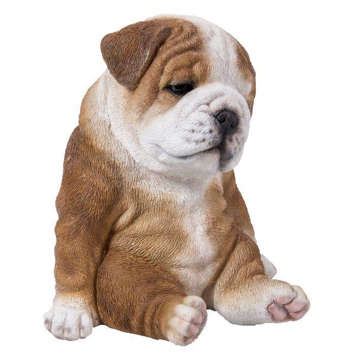 Sitting Sleepy Bulldog Puppy Statue Bulldog Puppies Puppy