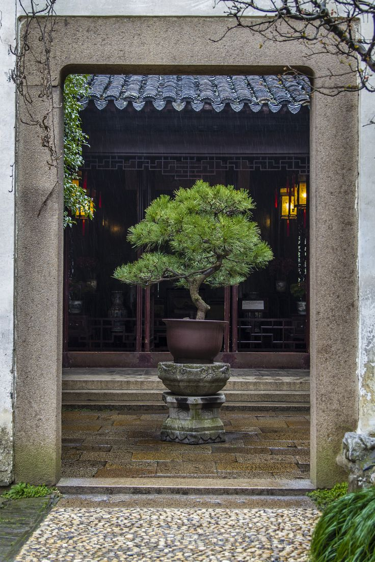 Chinese Garden A Photo From Guangdong South: Chinese Classical Garden, Suzhou