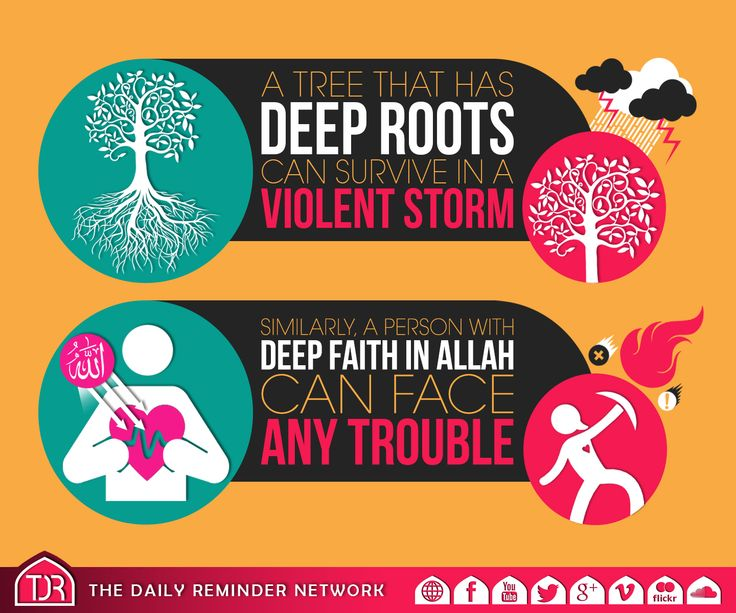 A tree that has deep roots can survive in a violent storm. Similarly, a person with deep faith in Allah can face any trouble.