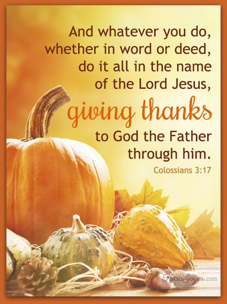 212 Best Colossians Images On Pinterest Bible Quotes