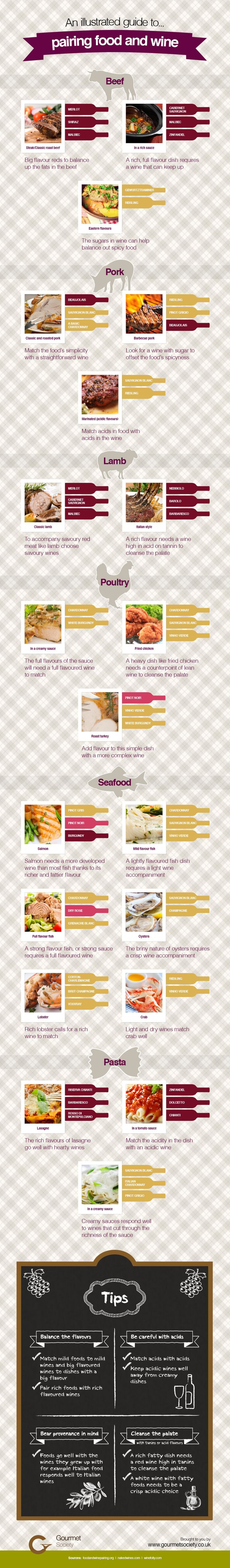 Pairing food and wine Infographic