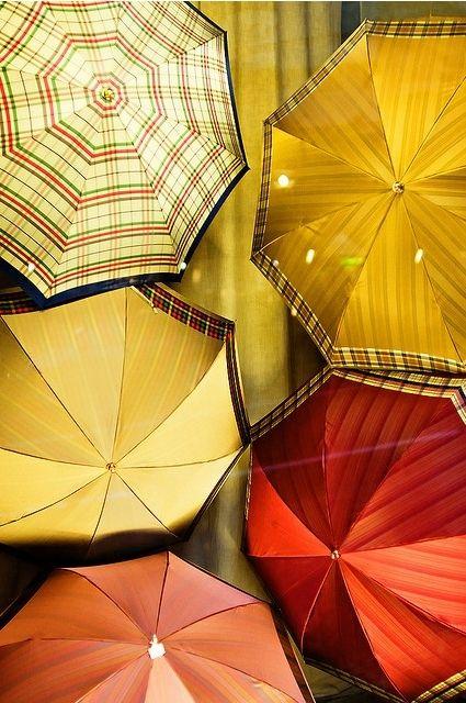 umbrellas - I really want some cool umbrellas.