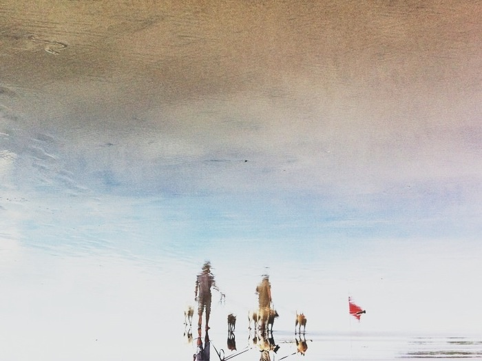 Reflection of people and their dogs #bali #beach #iphoneography