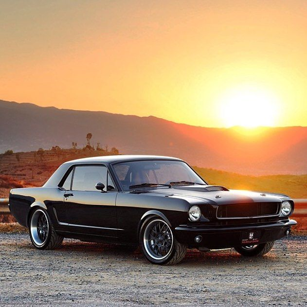 Vintage Mustangs On Instagram Coupe Life Car 1965 Mustang
