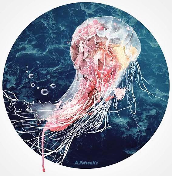 Медуза