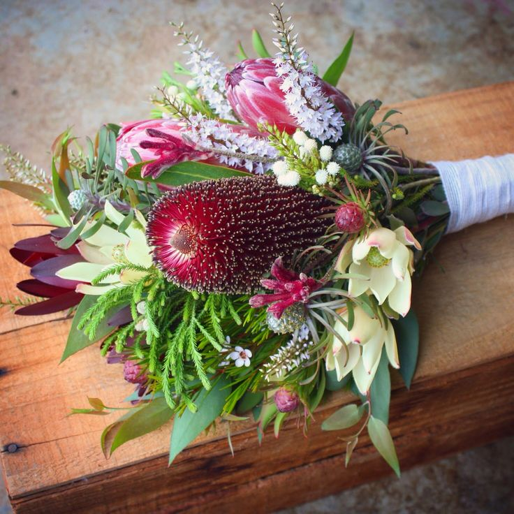 Wedding Flowers December: 1000+ Images About Mixed Protea Bouquets On Pinterest