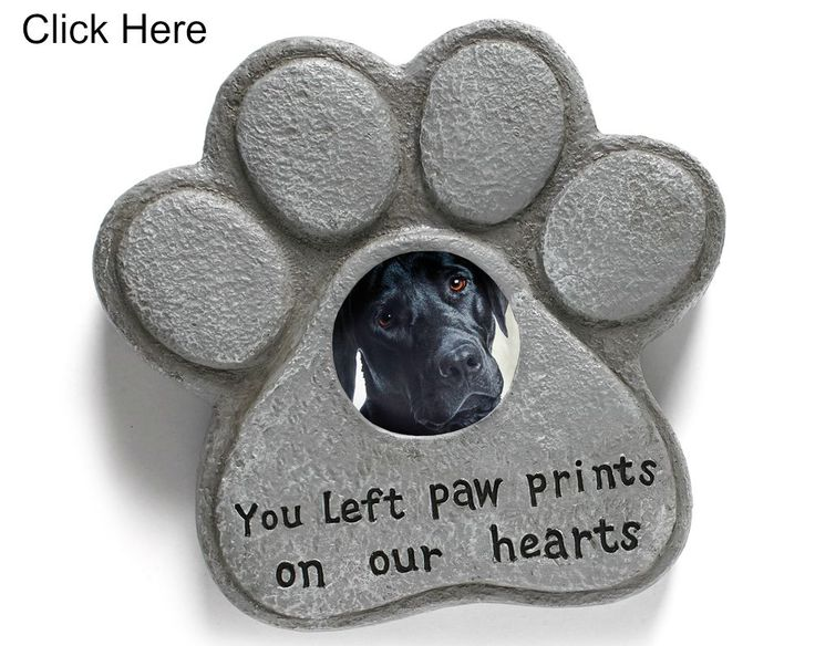 Unique pet garden memorial. Weighted to stay in place with a 6.5cm glass window for a picture. For Cats, Dogs or any pet with paws.  Made of waterproof resin. Size 21 x 22 x 5cm