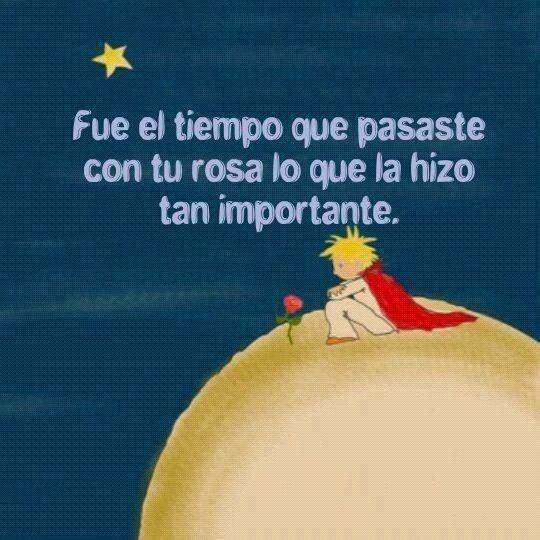 """""""Fue el tiempo que pasaste con tu rosa lo que la hizo tan importante"""" #FrasesQueMeGustan"""