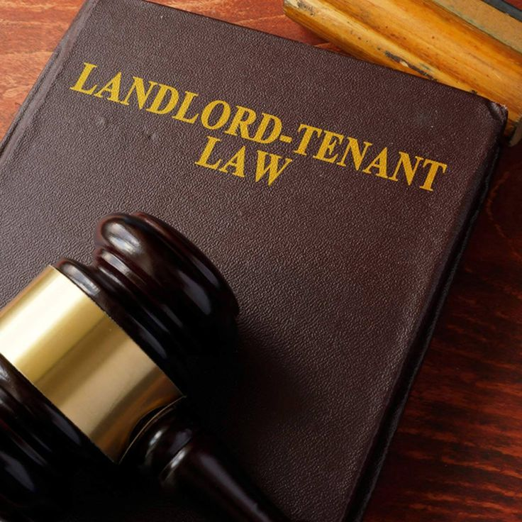 12 little known rights of renters being a landlord