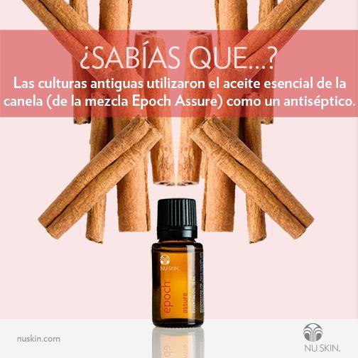 Epoch Assure—Difunde en el ambiente o combínalo con el Aceite Difusor Tópico y aplícalo tópicamente a la piel para neutralizar olores o limpiar superficies.