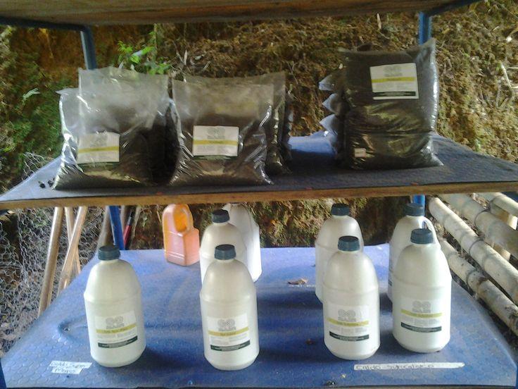 Entre los biopreparados del laboratorio de La Doble Espiral está: el BIOL- SUPER MAGRO,  caldo que se puede usar de forma foliar y en el suelo. Es un buen abono porque aporta elementos menores como: sulfato de cobre, sulfato de magnesio, sulfato de zinc, manganeso, sulfato de hierro, bórax, nitrógeno y potasio, además sirve como fungicida en general. Sirve para toda clase de cultivos solo se debe ajustar la dosis.
